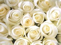 miramonti-l-altro-eventi-matrimoni10